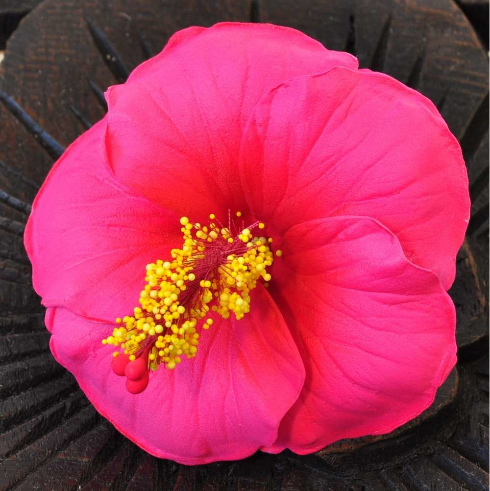 bl ten kunstblumen hibiskus rot g nstig kaufen. Black Bedroom Furniture Sets. Home Design Ideas