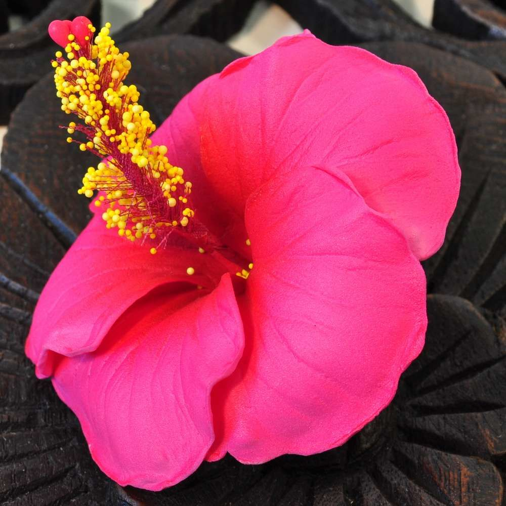 Flowers Artificial Hibiscus Red Buy Cheap Online