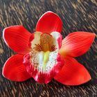 Blossom Artificial Flower Orchid in glorious red - like real